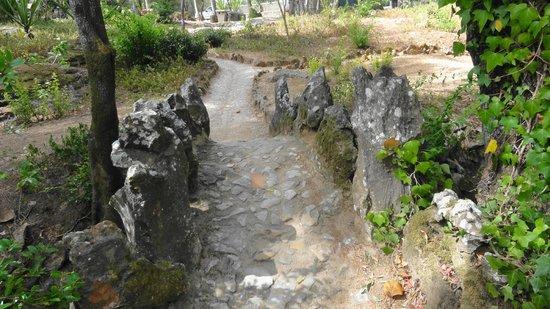 Marechal Carmona Park: Mostek