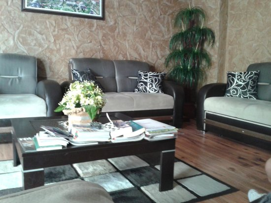 Sirma Sultan Hotel Istanbul: Reception area
