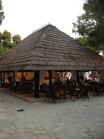 Pine Beach Pakostane : bar
