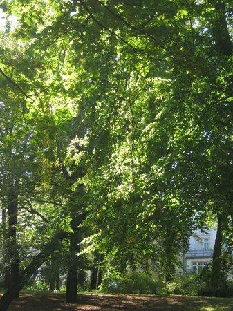 Kurpark Warnemünde: In Herbst sehr schön