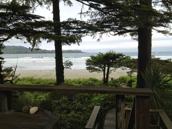Chesterman Beach Bed and Breakfast: View from the balcony