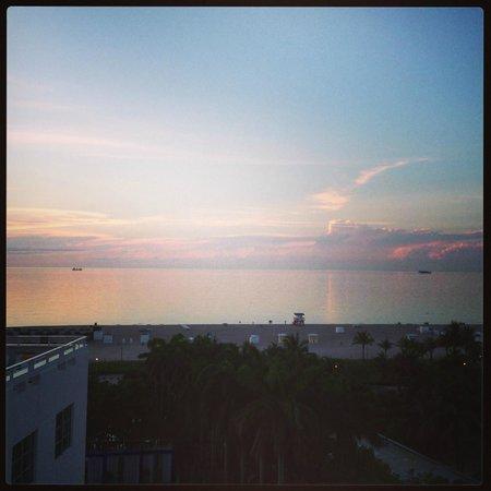 Shore Club South Beach Hotel: Room View