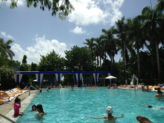 Shore Club South Beach Hotel: The Pool