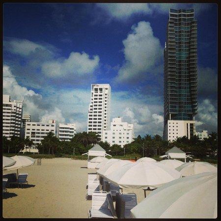 Shore Club South Beach Hotel: Shore club