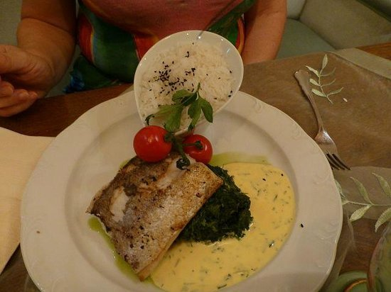 Ringhotel Parkhotel Stadtallendorf: Fischgericht