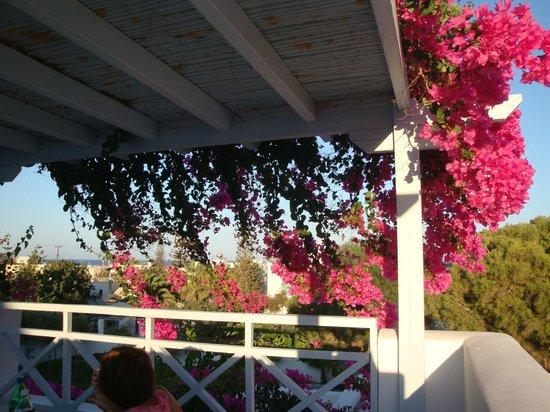 Santorini Kastelli Resort: view from balcony