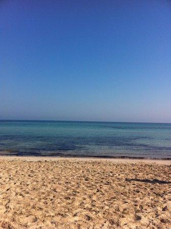 Club Marmara Narjess: très belle plage