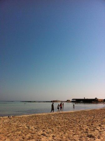 Club Marmara Narjess: une mer de rêve
