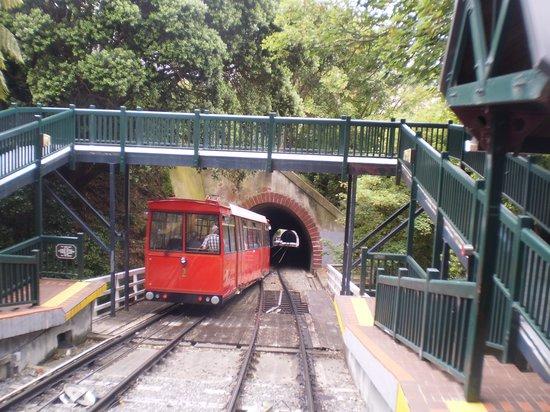 Wellington Cable Car: Salamanca - University Station