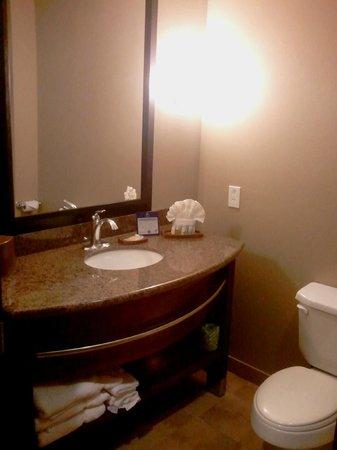 BEST WESTERN PLUS Texoma Hotel & Suites: Bathroom