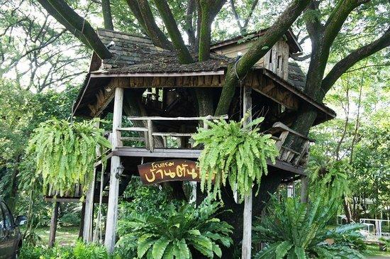 tree house hotel updated prices reviews photos sisaket rh tripadvisor ca