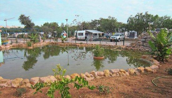 Parque Campismo Ria Formosa: Alvéolos