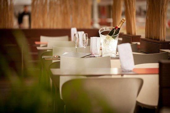 Popular Restaurant & Sushi : Summer garden