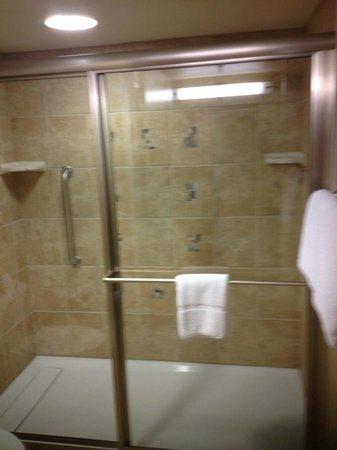 Thunderbird Executive Inn & Conference Center: Nice big shower!