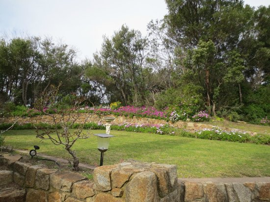 Hilltonia Homestead: Garden