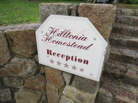 Hilltonia Homestead: Hilltonia sign