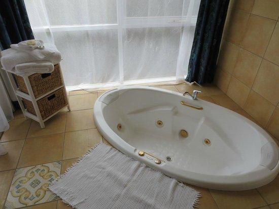Hilltonia Homestead: bath