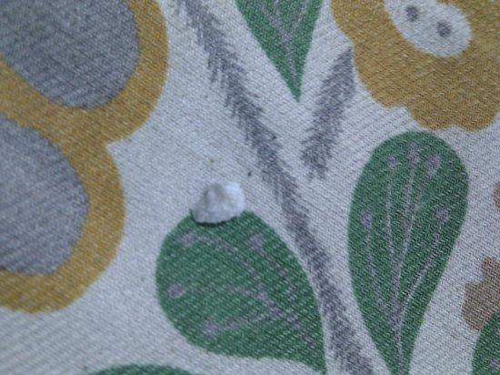 Mahabandoola Guest house: toe nail
