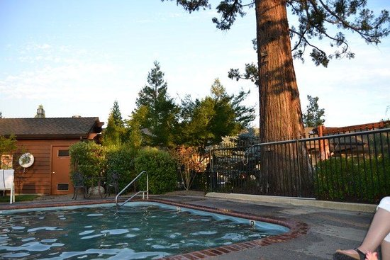 Redwood Hyperion Suites: by the pool
