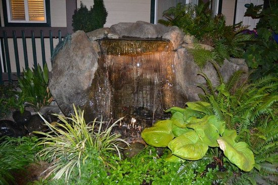 Redwood Hyperion Suites: one of sevral waterfalls on the grounds