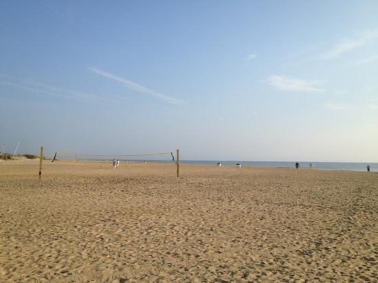 Wyndham Virginia Beach Oceanfront : next to the beach