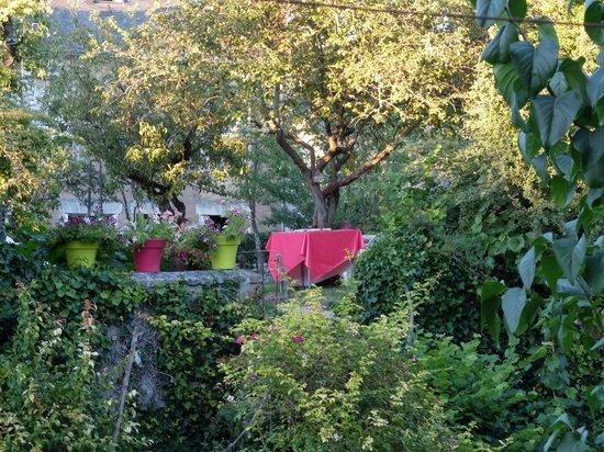 Jardin des Lys : Vue du jardin