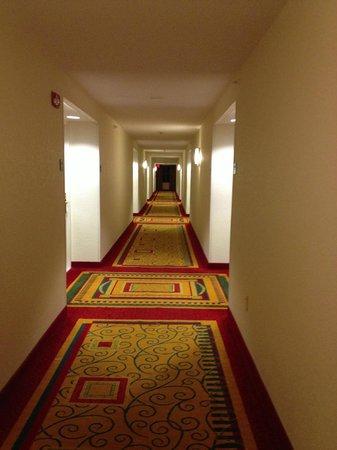 Boca Raton Marriott at Boca Center: Hallway