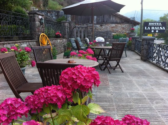 Hotel La Balsa: Terrace #1