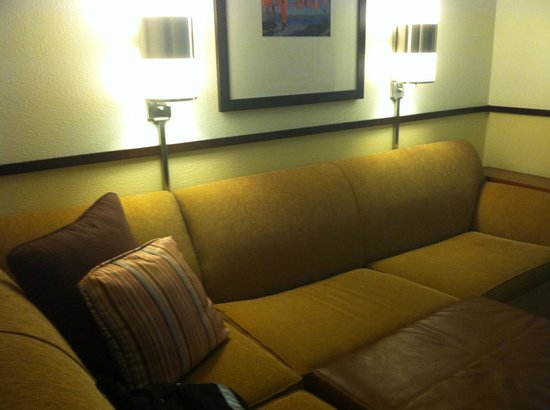 Hyatt Place Charlotte Airport/Lake Pointe: Sectional Sofabed!