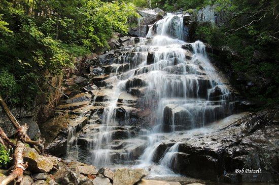 Franconia Notch State Park: Cloudland Falls on the Falling WatersTrail
