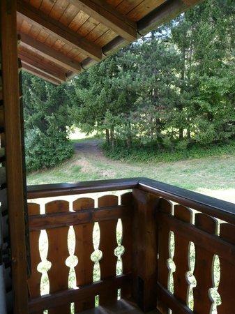 Albergo Panorama: Vista dal balcone