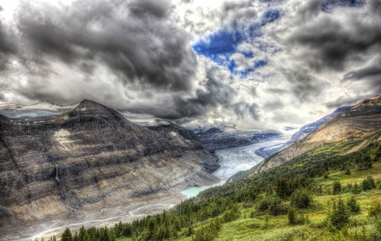 Parker Ridge Trail : Cool view of the Columbian Icefield on the top of Parker Ridge