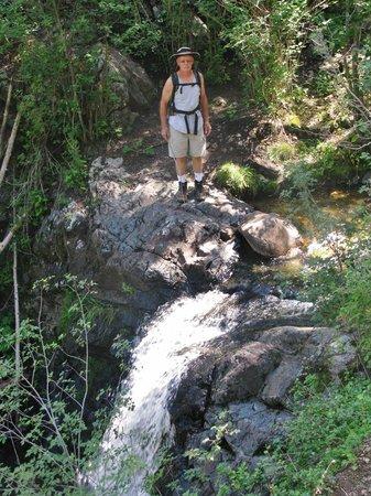 Cimarron Canyon State Park: Clear Creek Trail, Cimarron, NM