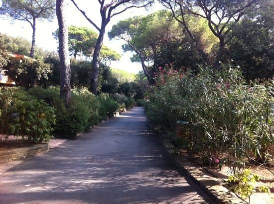 Roccamare Resort: vialetti dei bungalows