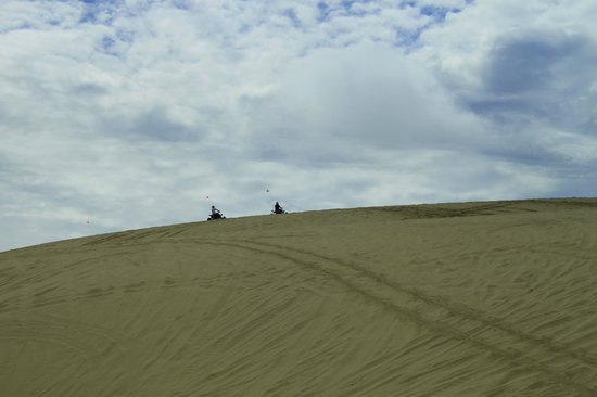What a blast! - Picture of Sandland Adventures, Florence ...