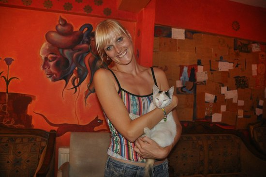 Stray Cat Hostel: me with one of the lovely feline residents