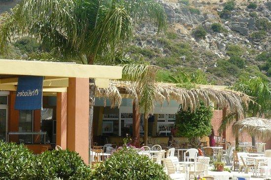 Olympia Sun Hotel: бар у бассейна