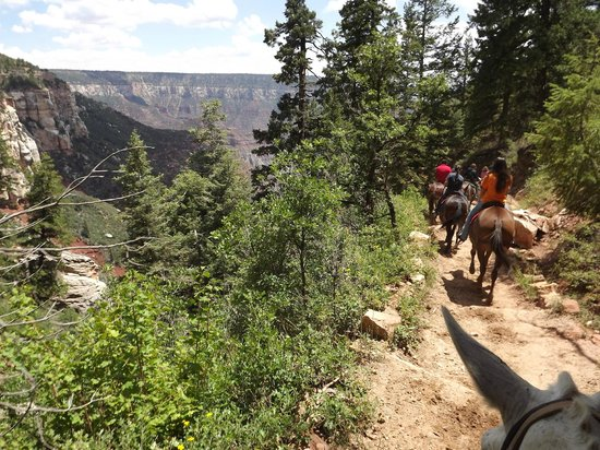 Canyon Trail Rides: The trail and views-Fun-tastic