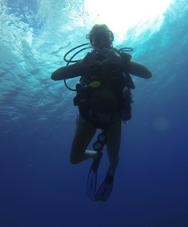 Grand Cayman Diving Picture Of Living The Dream Divers Seven Mile Beach