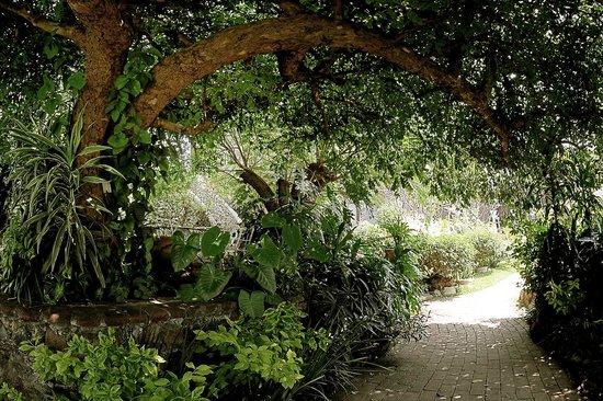 Jardines m gicos complementados con hermosa fauna - Jardines con encanto ...