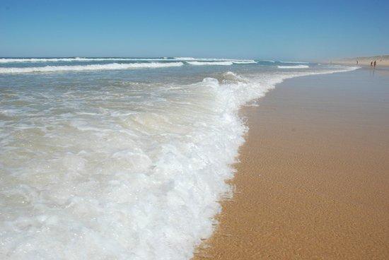 La Jenny : L'Ocean