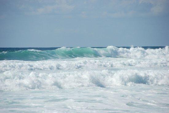 La Jenny : Ocean tous les jours différent