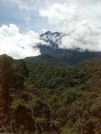 Kinabalu Mountain Lodge: Mount Kinabalu