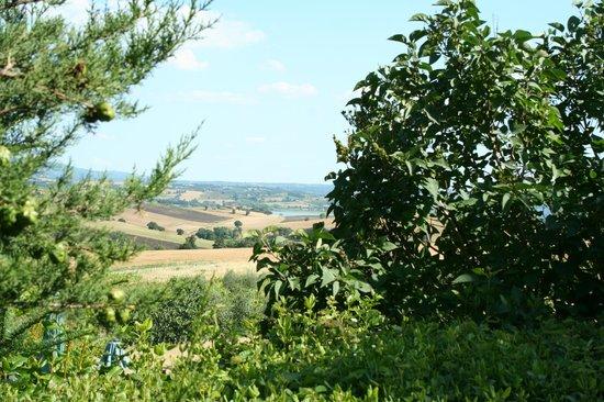 Agriturismo Stella : Vista giardino