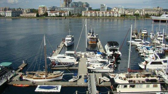 Coast Victoria Hotel & Marina by APA : view of marina at the hotel