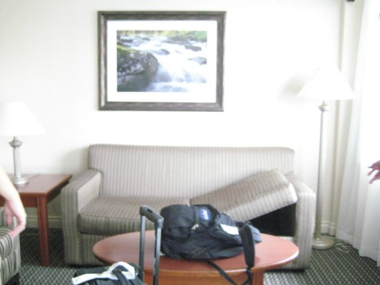 Best Western Plus Chateau Granville : Sofa bed