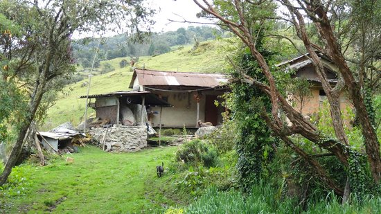 Andes EcoTours: rural dwellings in beautiful surroundings