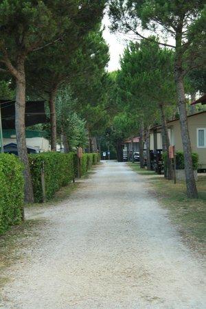 Jesolo Camping Village - Villaggio Turistico Adriatico: .