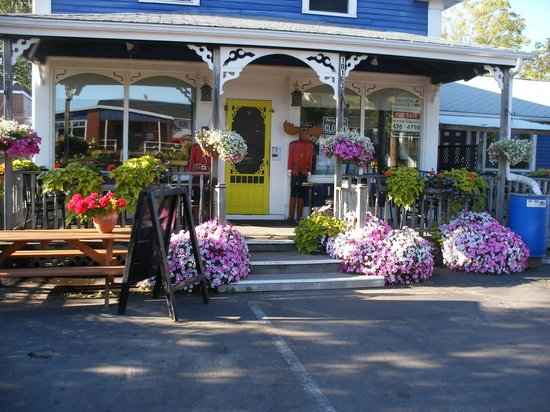 Chatterbox Cafe: Colourful flowers abound.