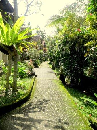 Abangan Bungalow: Pathways